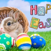 HAPPY EASTER FROM THE SCRP