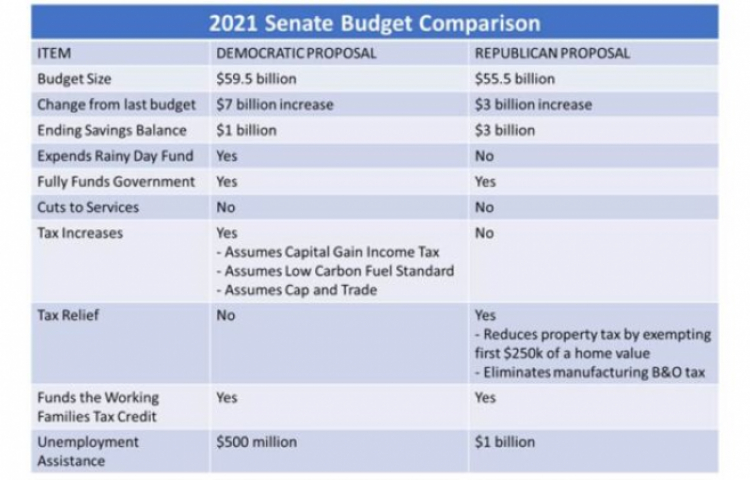 State Senate: Dems pass Tax and Spend budget Proposal