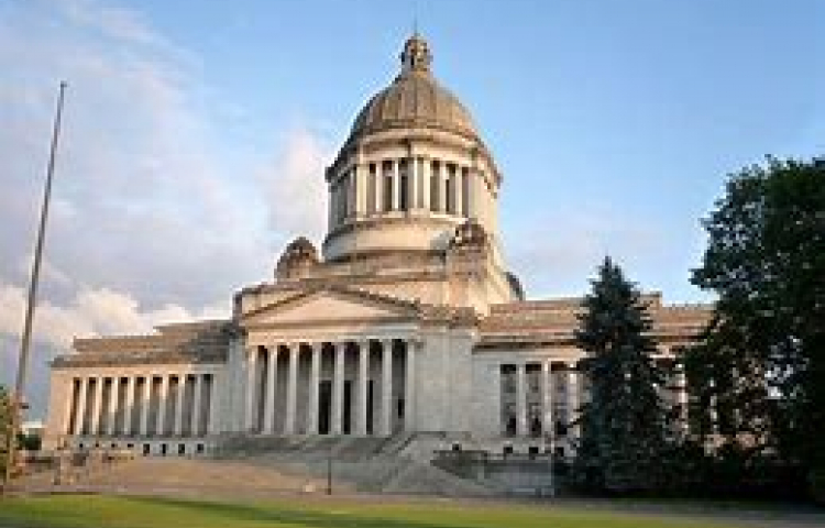 WA State Democrats just voted to extend the governors proclamations indefinitely
