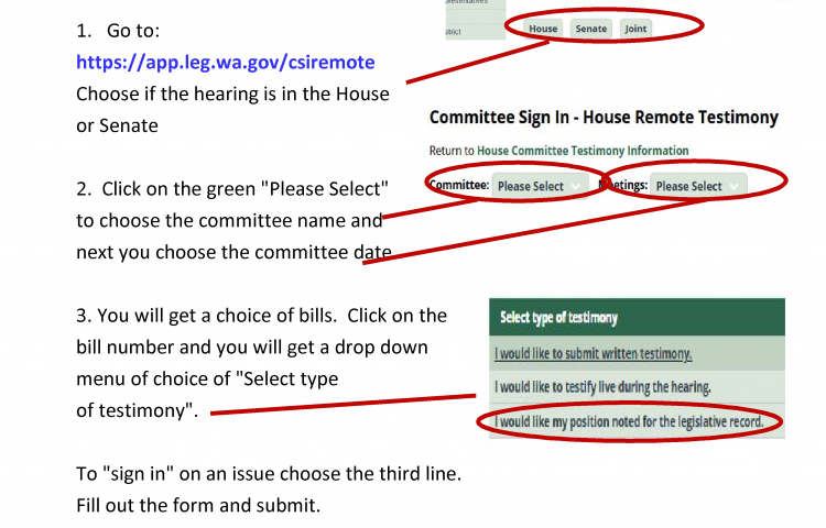 Call To Action! Workshop On How To Participate In WA State Legislative Hearings